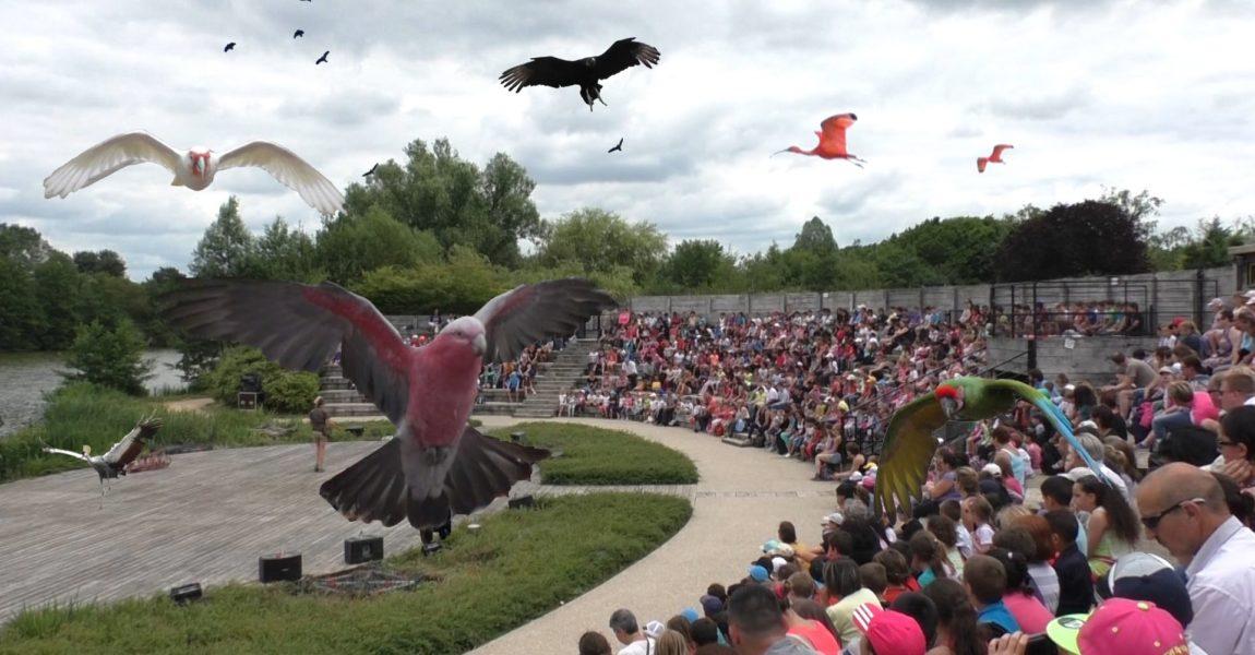 Visite privative du Parc des oiseaux et de ses coulisses